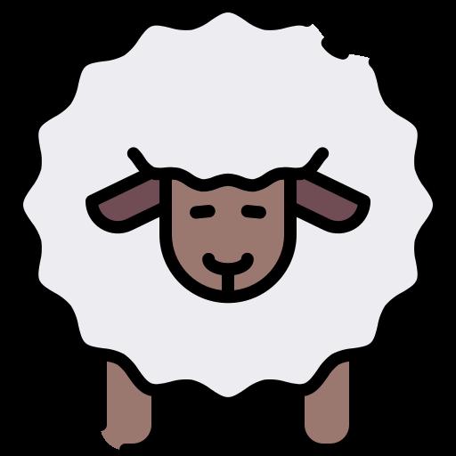 sheep-1Ee0tcA9X419Dw